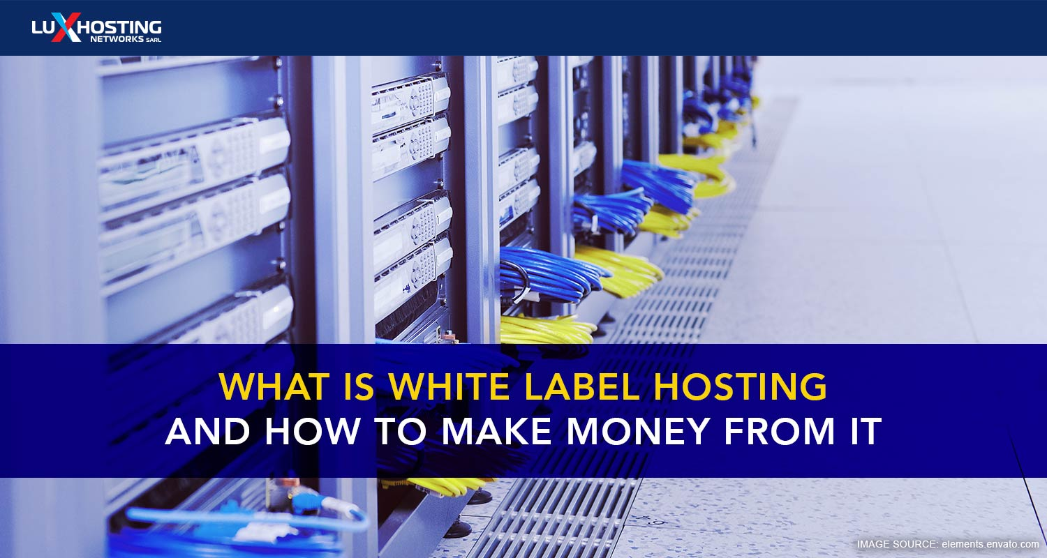 How to use White Label Hosting to Make Money
