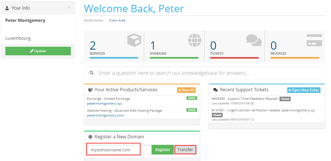 Client area page to register a new domain and select the transfer option